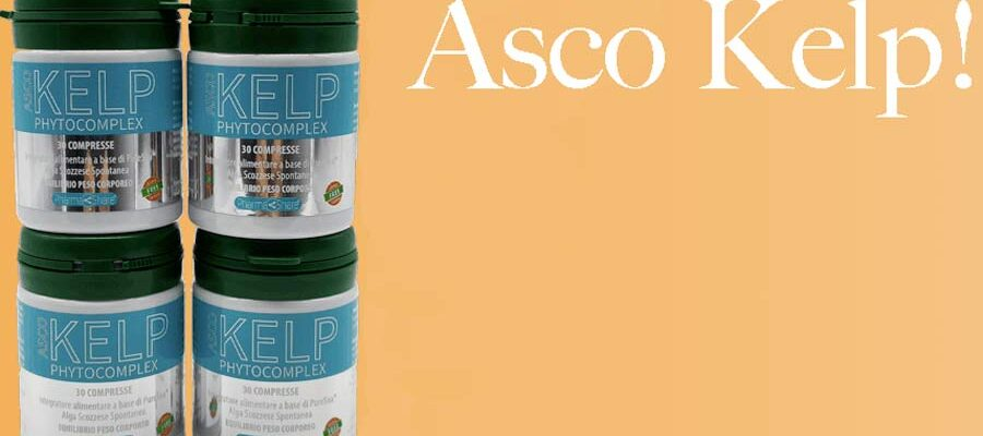 Asco Kelp